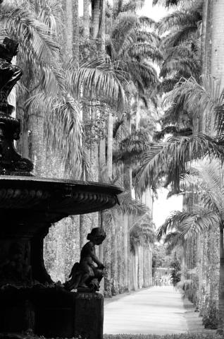 Jardim Botanico-20130123_153003