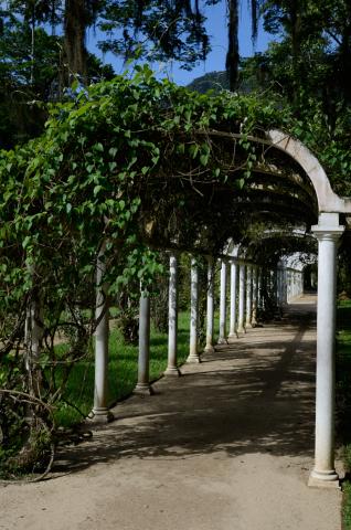 Jardim Botanico-20130123_163546