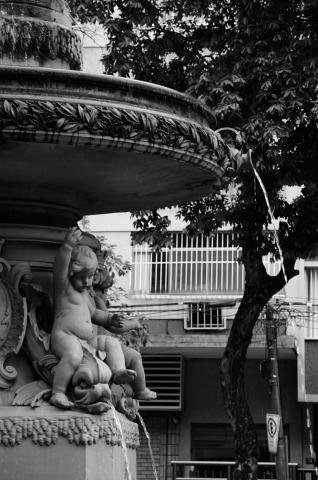 Laranjeiras-20130116_165834