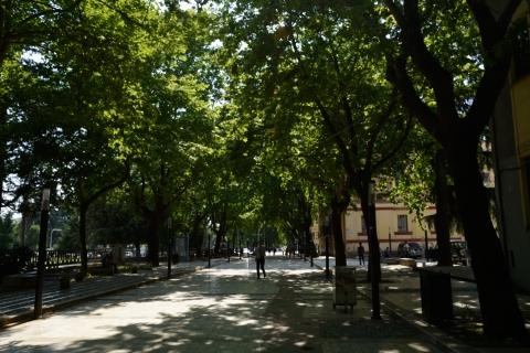 Tirana-20140604_155135