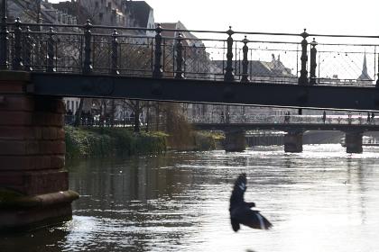 Strasbourg-20150228_155046_web